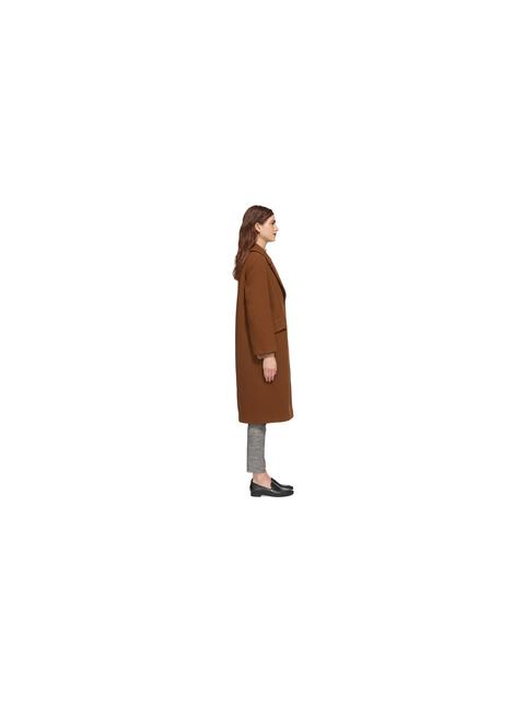 Weimaraner single coat
