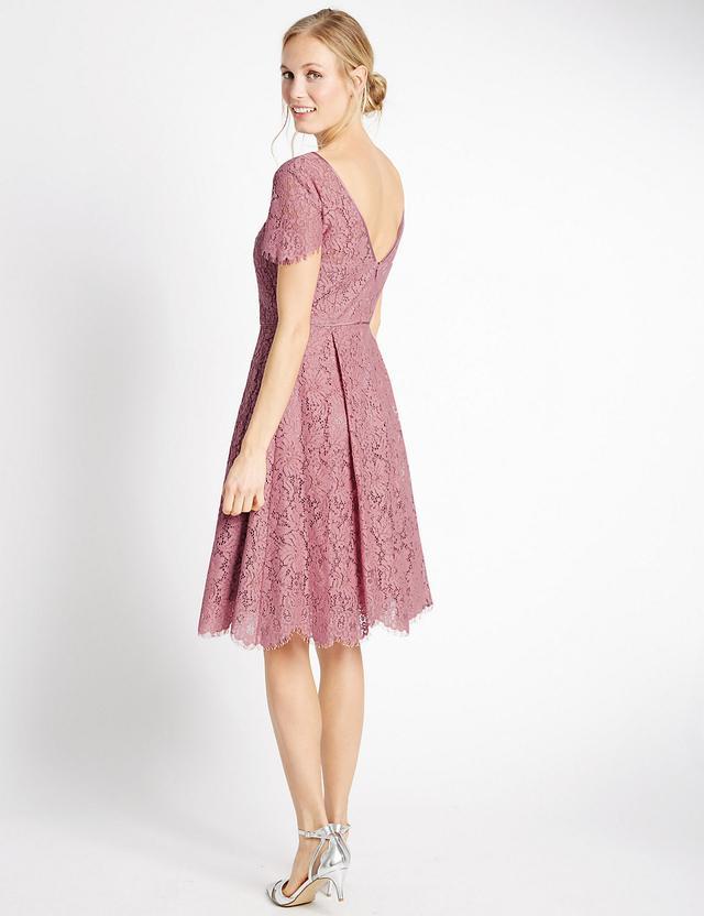 Short Sleeved Lace Skater Dress   Endource