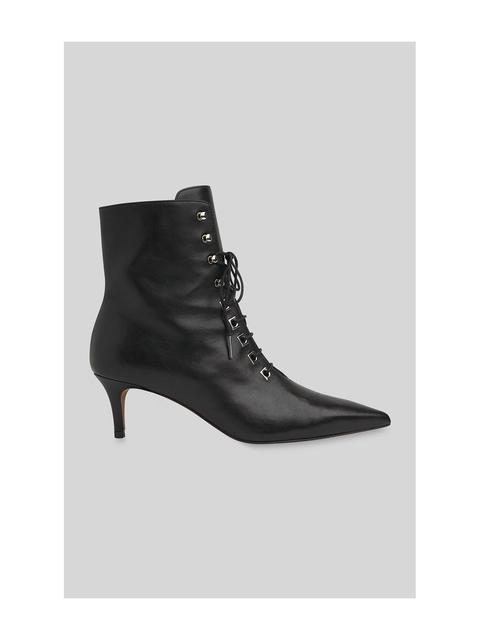 f48e1a0a376 Celeste Kitten Heel Boot