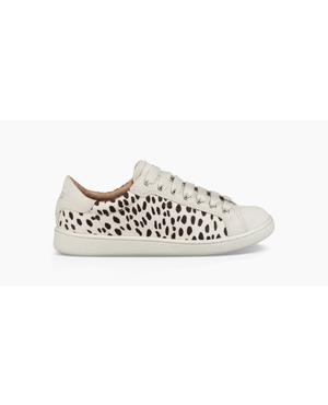 Fierce Geo Perf Shoes | Endource