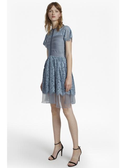 Shana Spotlight Flared Lace Dress  f35d821b8