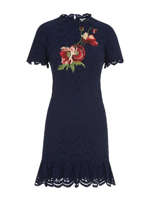 0a85209558 Embroidered Lace Shift Dress