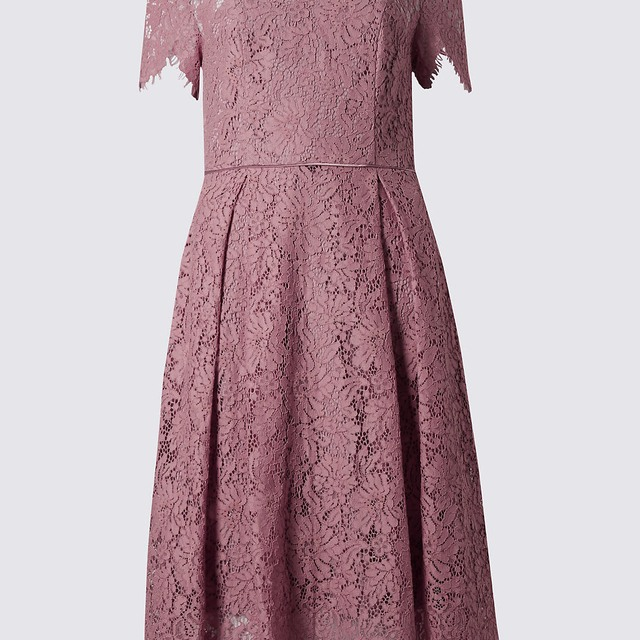 Short Sleeved Lace Skater Dress